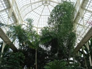 botanicalgardensndublin